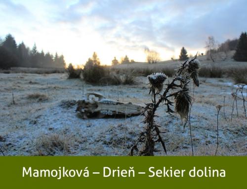 Mamojková – Drieň – Sekier dolina